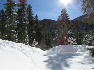 BEAUTIFUL TAOS MOUNTAIN LIVING! ...CLOSE TO SLOPES ....New & Quiet