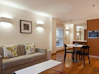 Modern design one bedroom apartment in Clerkenwell - London