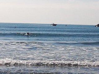 Camargue Saintes Maries De La Mer: Rentals for holidays by the sea!