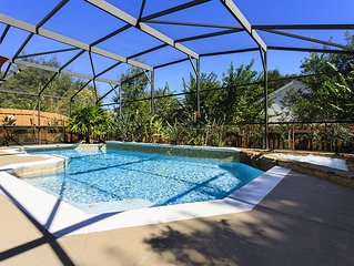 Beautiful Pool Completely Secluded in Your Own Tropical Oasis Backyard