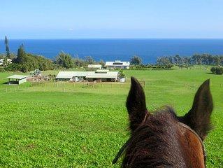 Oceanfront Nature Retreat