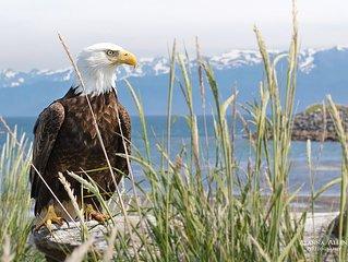 Alaska Mountainview Chalet - Near Morgan's Landing, Kenai River