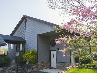 Four Lions- Asheville Luxury Mountain Cabin-3 Bedrooms W/ Amazing Mountain Views