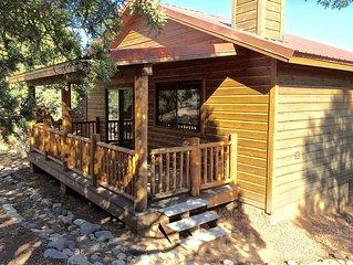 Black Bear Lodge with a Fenced Yard for Dogs! Near Hiking/Biking Trails!