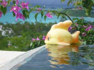 Luxury hillside family retreat set in 3/4 acre tropical garden stunning views