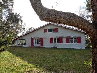 Maison 6 personnes sur terrain boisé 3600 m2