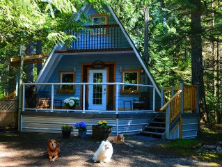 Pet Friendly Cottage Retreat In Old Growth Forest
