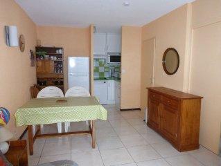 Appartement ** (2 pieces/42 m2) au Balcon de Villard - residence calme