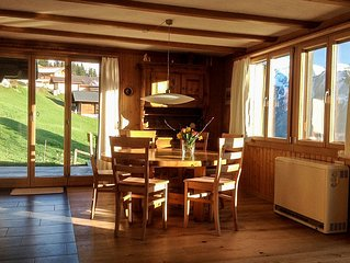 quiet, sunny position, ideal with children, grossser garden, near ski / hiking