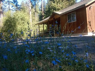 Year Round Adventure on 2 acres. Sledding Hill, Hot Tub, near trails/Suncadia,