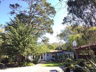 Asilomar Ocean Retreat - half acre near ocean