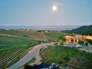 Wild Coyote Estate Winery/Vineyard 'House-Of-Zin'