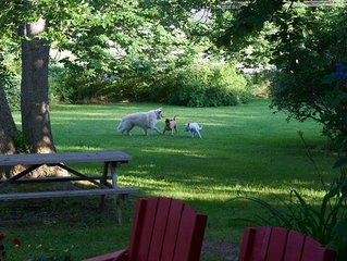 Michaelmas Cottage 1769 - Family/Pet Vacation - Rural Annapolis Royal