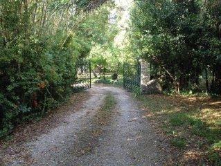 St Remy  a deux pas des Alpilles propriete isolee avec gde piscine