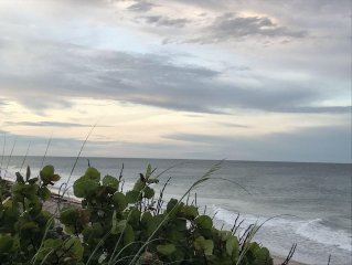 Ocean Front Suite | Sea Turtles & Sea Breeze | Perfect Location