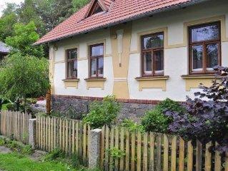 Holiday home, Svobodne Hamry  in Chrudim - 8 persons, 4 bedrooms