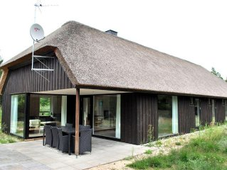 4 bedroom accommodation in Blåvand