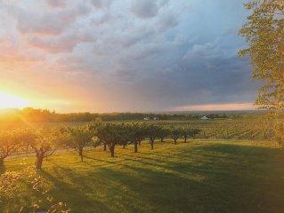 Vineyard Estate House In Niagara