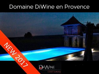 Luxury villa in Provence with Private Pool in Vineyard DiWine