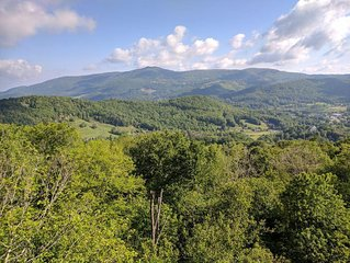 1BR/1BA Condo Located At The Crest On Sugar Mountain