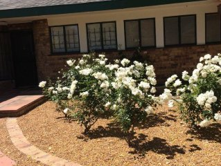 Stellenbosch Town Centre  - Large 4 bed,  Very Private Garden with 10m pool