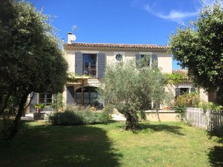 House with swimming pool at the bottom of alpilles