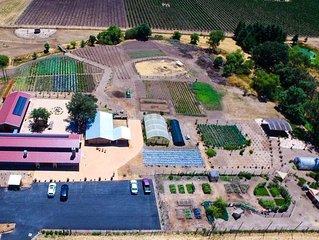 Sonoma Broadway Farms is a private 6 acre farm minutes from the Sonoma Square.