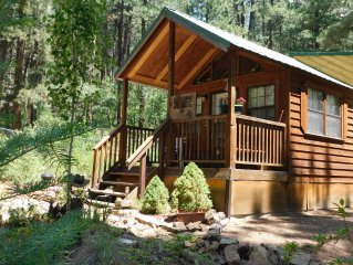 SW Colorado Cabin On Private Acreage
