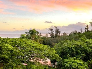 Oceanfront Hilo, Fantastic  Condo, Swim with the Sea Turtles