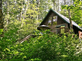 Adorable Mountain Getaway Tucked in the Trees! Hot Tub, Lots of Amenities