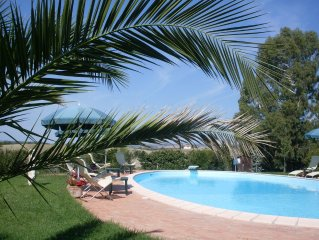 Magnificent swimming pool among mediterranean vegetation,  private garden