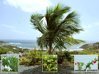 Private entire villa in Sint Maarten: Special pricing for 1st time clients***