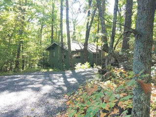 HOT TUB! FIREPIT! Hiking Trail off Property! 60' HDTV Walk to Inn Cozy 4BR house