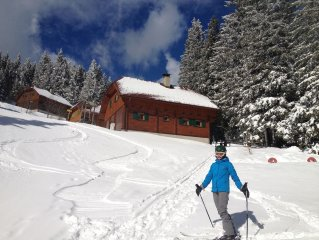Mountain cabin directly at skiing slope for 12 persons
