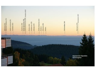 ALPENBLICK: Urlaub im Bergwald - mit großem Hallenbad & unvergesslichem Panorama