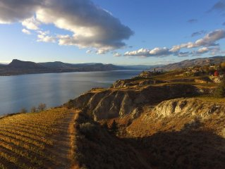 Beautiful lakefront vineyard in the heart of wine country, 2BR suite