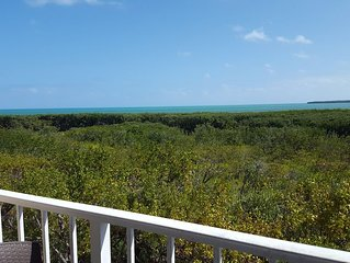 Tastefully Renovated Oceanview Condo: Prices Starting*$159.00/nt with FREE WiFi
