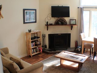 Cozy  Condo 2 minute walk to slopes/activities. Dog friendly
