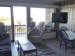 Secluded 2 bedroom condo on Lake Michigan - Homestead in Glen Arbor