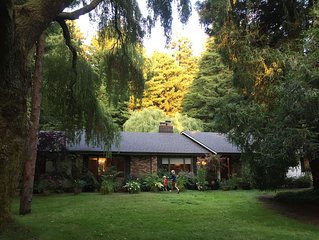 Gorgeous Kid & Dog Friendly Country Home Nestled In The Redwoods