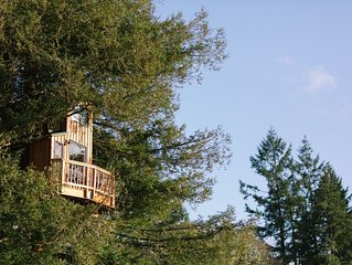 Three Level Treehouse in Wine Country