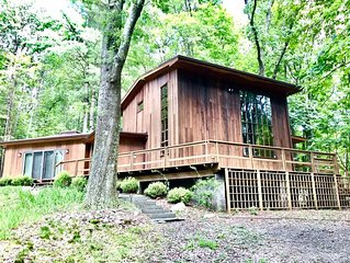 Midcentury Modern Cabin Home in the Woods- Under 2 Hrs From Nyc!