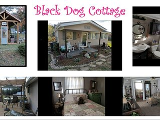 NEW LISTING ♥ Quiet Cottage Nestled in the Foothills - Pet Friendly! ♥
