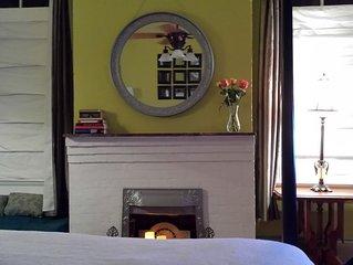One bedroom apt near Tulane and Loyola