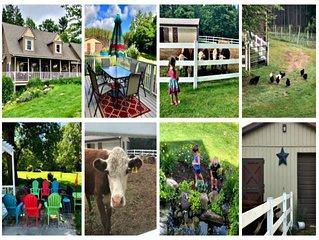 True North Farm- Entire House Sleeps 12-16