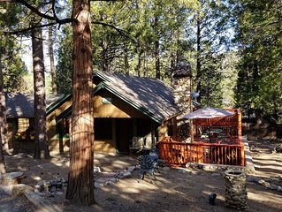 Mountain Cabin - Old Idyllwild Charm! Dog friendly.