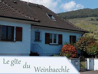 12 Person House -  Gite du WEINBAECHLE