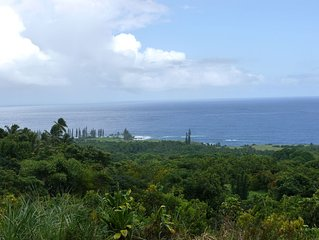 Hana's Heaven - a charming 2 bedroom cottage with spectacular ocean views