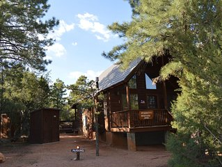 Cozy A-frame cabin in tall pine forest