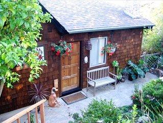Mill Valley Retreat  --  cozy